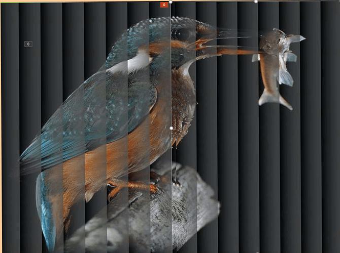 Ptak%202019-08-05%20141801%20(2)