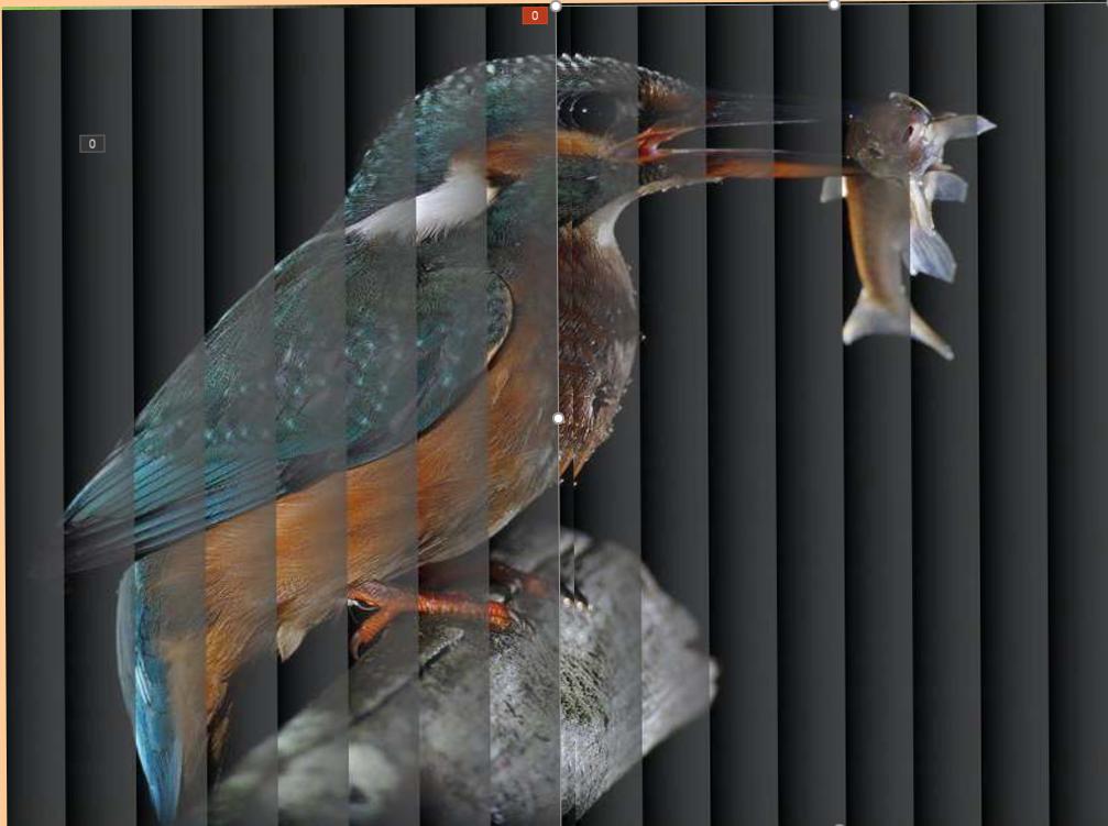 Ptak 2019-08-05 141801 (2).png